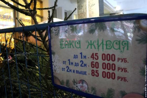 Elochniye-bazari-nachali-rabotat-v-Minske-04