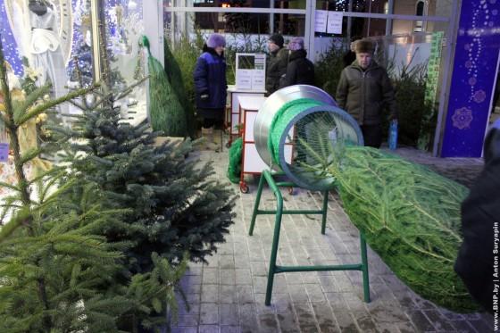 Elochniye-bazari-nachali-rabotat-v-Minske-13