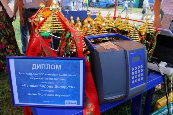 Luchshaya-korova-Belarusi-6-iynya-2013-08