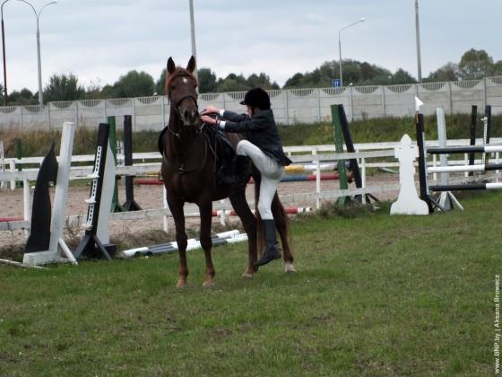 Konniye-sorevnovaniya-v-Breste-28-september-5