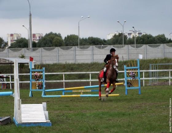 Konniye-sorevnovaniya-v-Breste-28-september-8